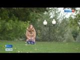 Вести-Москва • Депрессия от погоды: как убежать от осенней хандры