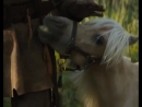 Promo-clip 6 from DamselMovie She's named after one of Penelope's favorite candies