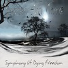Frozen In Time [Symphonic Melodic Death Metal]