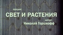 118 Лекция ФИТОСВЕТ - ВЧЕРА, СЕГОДНЯ, ЗАВТРА. Лектор Николай Горшкофф часть теоретическая