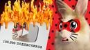 ЮТУБ КНОПКА! ЛЕДИБАФ И СУПЕР КОТ МАЛЫШ! КОШЕЧКА МУРКА ИГРАЕТ в Ladybug and Noir! ЛЕДИ БАГ ФАНФИК