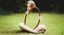 9 Illusionen die deine Augen austricksen!