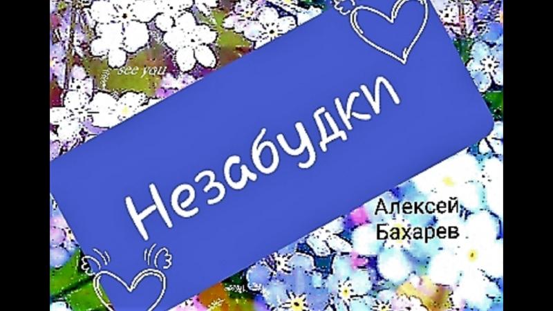 НЕЗАБУДКИ новая лирика в исп. Алексея Бахарев