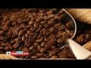 Чай чи кава: правила споживання улюблених напоїв
