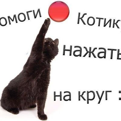 Вася Шурпатов, 27 июня , Выборг, id160878513