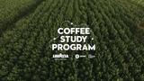 Coffee Study Program - Trailer