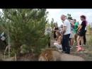 Поездка в Саванну пользуется сумасшедшей популярностью