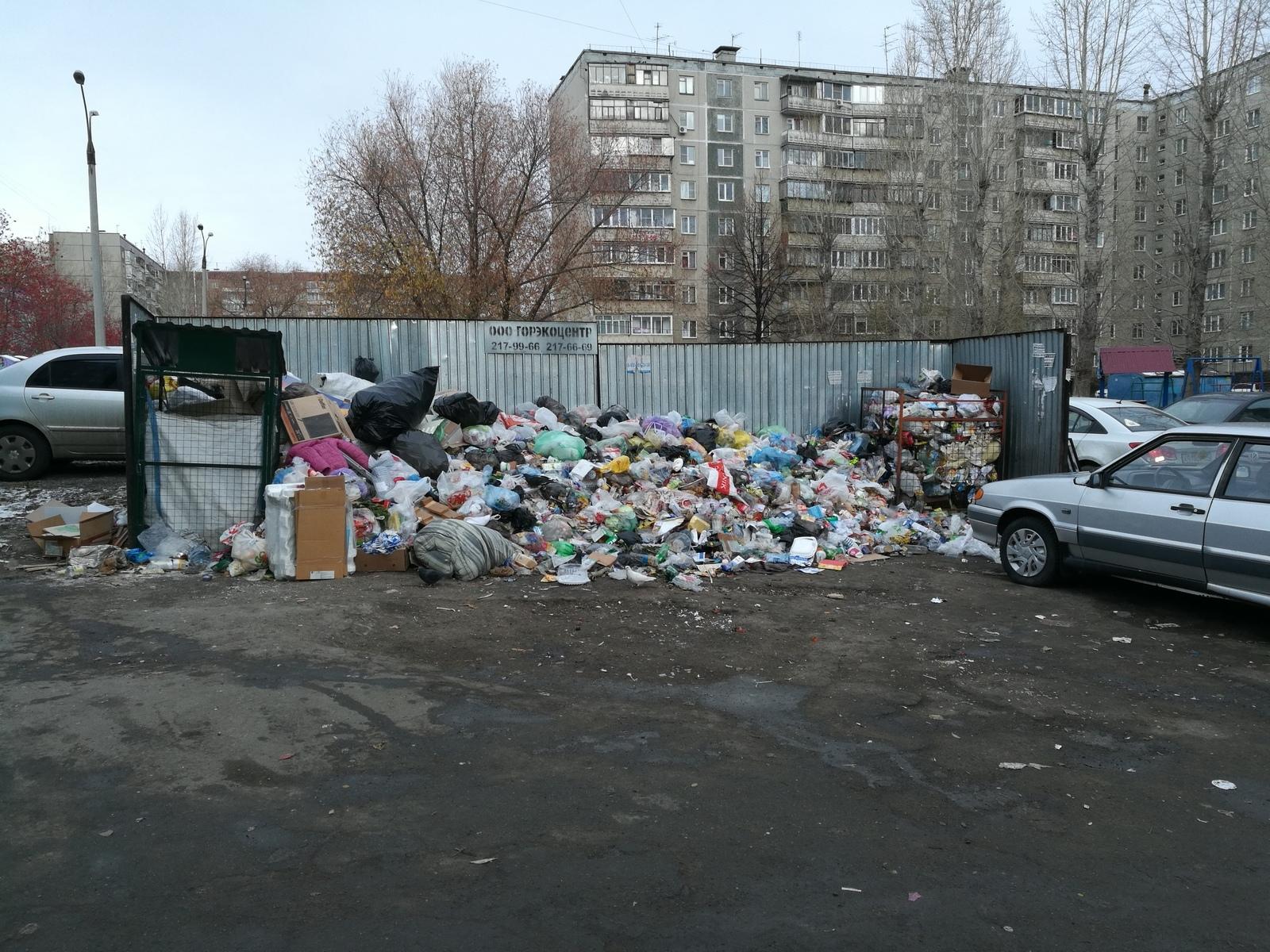 Мэр сказал что проблему с мусором решил