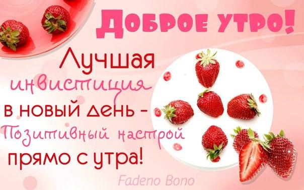 http://cs405127.vk.me/v405127583/12164/t_eXtzY_NPA.jpg