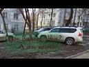 ГАЗОНУТЫЕ не ФУТБОЛЬНАЯ сборная Казахстана по замесу Газона