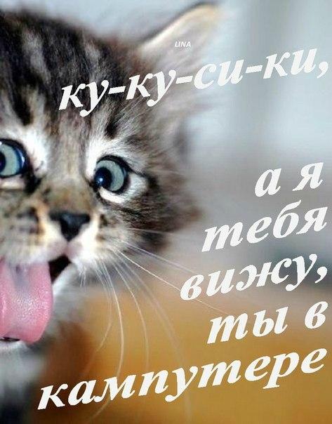 Фото №323049762 со страницы Фотины Веклич