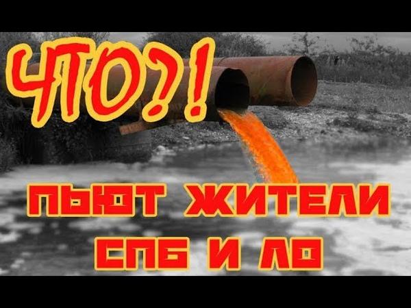 Какую воду пьют петербуржцы? Как канализационные стоки и нечистоты попадают в Неву