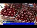 Центральный рынок Саранска стал одним из победителей Всероссийского конкурса Торговля России 2018
