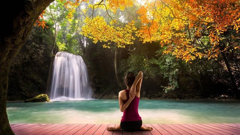 Música Relajante para Tranquilizar la Mente con Cascada y Bosque, Relajarse y Dormir