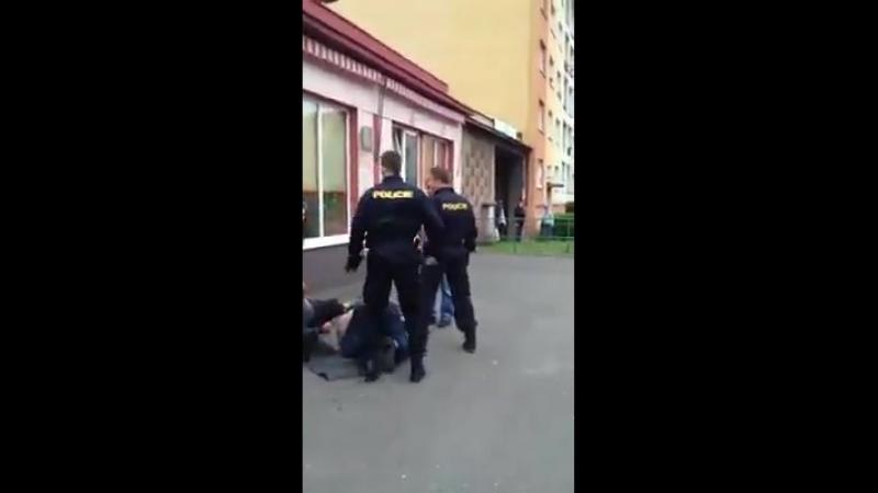 Lern Video für die Deutsche Polizei bei nicht Deutschen Respektlosen Gästen !