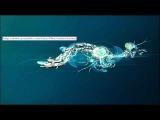 Guille Placencia - Jackpot (Original Mix)