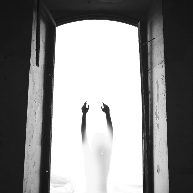 Светлана Ворона |