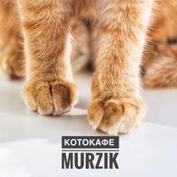 """Логотип Тайм-кафе """"MURZIK"""" котокафе Самара-мурзик"""