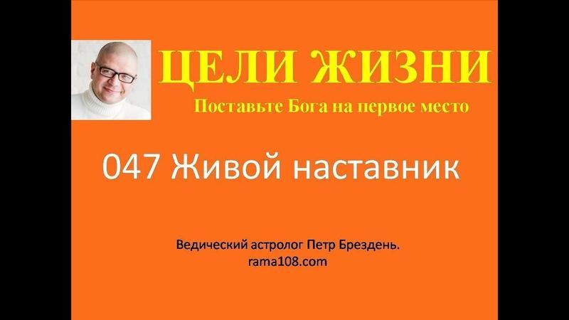 047 Цели жизни Поставьте Бога на первое место Петр Брездень Живой наставник