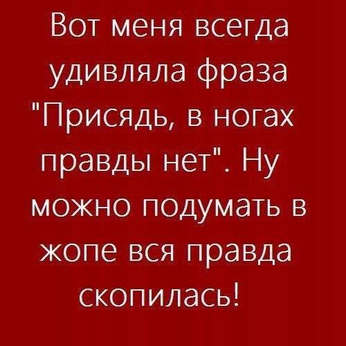 https://cs7066.vk.me/c543105/v543105123/29dbe/lR8GaUIvrMQ.jpg