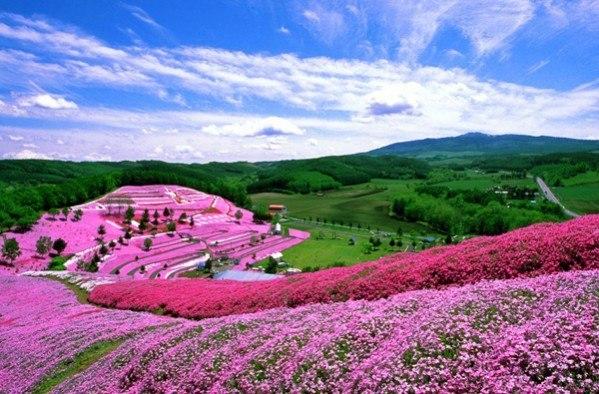 Великолепный парк в Японии.