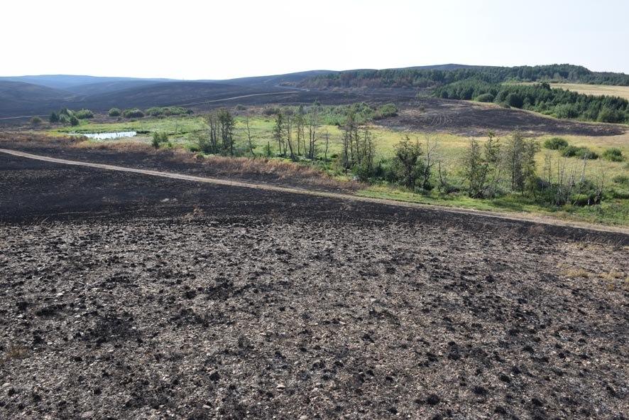 Выгоревшие участки Буртинской степи