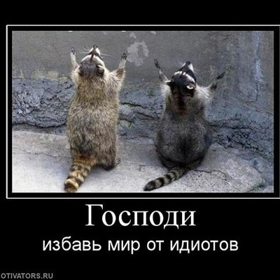Николай Торгашов, 5 января 1999, Пермь, id190112672