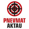 Пневматическое оружие в Актау