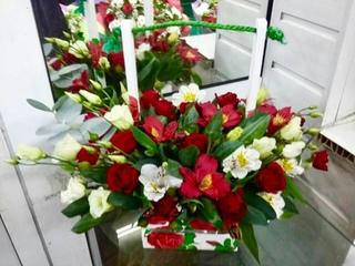 Финика для интернет магазин цветов г луганск луганська область 91000 цветов нижний
