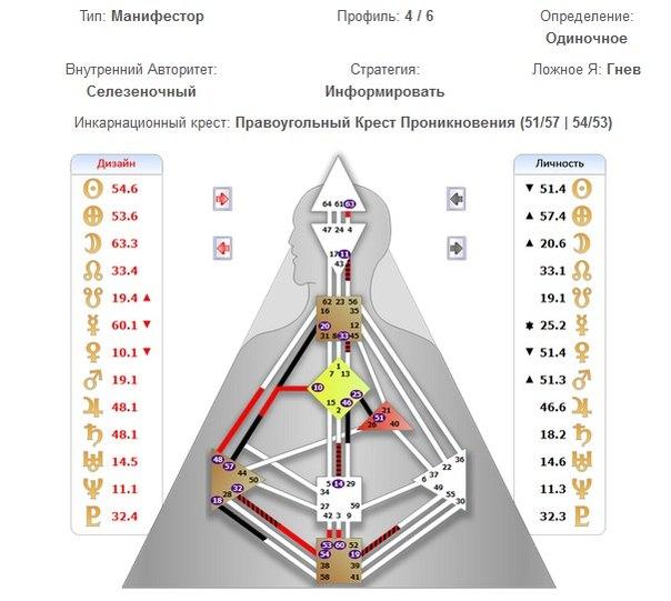 Дизайн человека 4 6