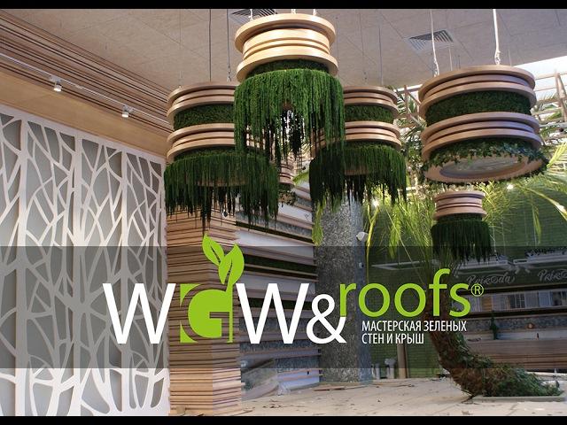 Озеленение ресторана стабилизированными растениями