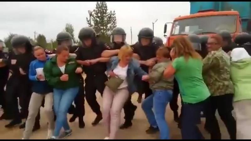 ОМОН победил женщин на полигоне ТБО в Щелканово