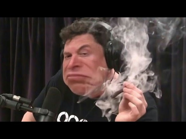 Elon Musk Gets High and Denies Climate Change