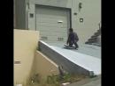 Deathwish Skateboards on Instagram: «@_pedrodelfino Rollercoaster Ride 🎢 @thrashermag 🎥 Filmed By- @kaylannediaz