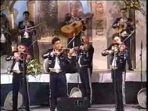 Mariachi Internacional Guadalajara Violin Gitano