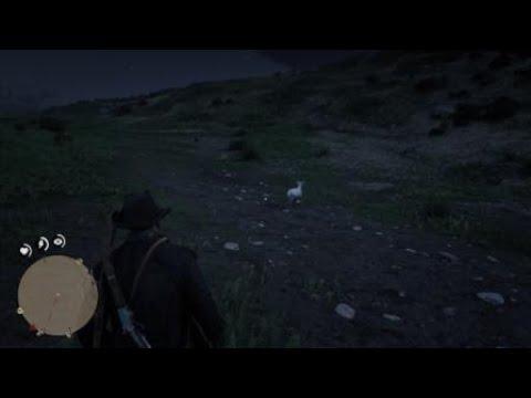 Red Dead Redemption 2 Коза боданула D