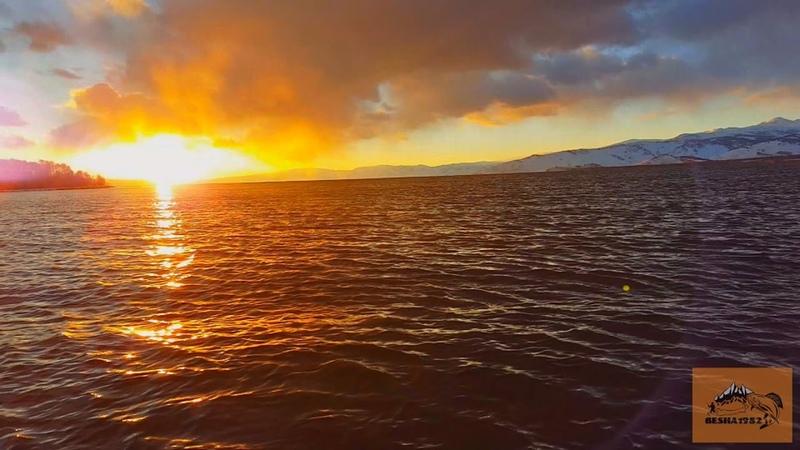 оз. Маркаколь, лучшее видео о ловле УСКУЧА (ЛЕНКА)/Рыбалка на заповедном озере
