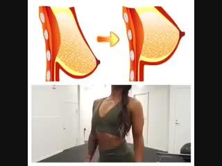 Три мышцы груди и 5 упражнений для груди