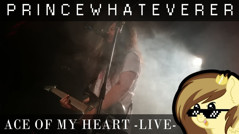 PrinceWhateverer - Ace of my Heart [LIVE @ DERPYFEST]