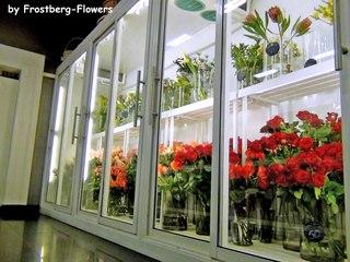 Купить холодильники для цветов