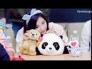 Twice Tzuyu Cute Moments 可愛的子懵