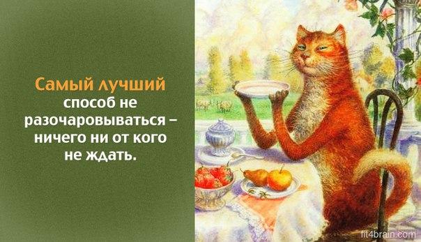 https://pp.vk.me/c543100/v543100585/15586/RX3K62ZWsDo.jpg