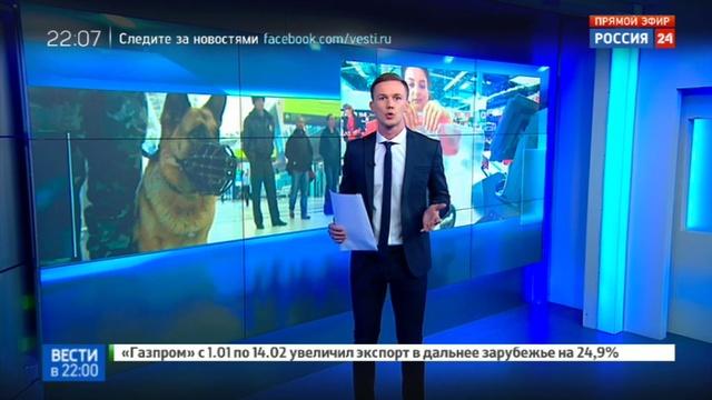 Новости на Россия 24 • Алкоголь из Duty Free предлагают запретить проносить на борт самолета