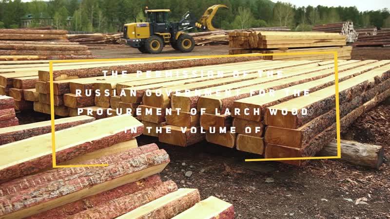 Деревообрабатывающий завод - Закаменск