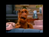 Alf Quote Season 1 Episode 19_Клетка