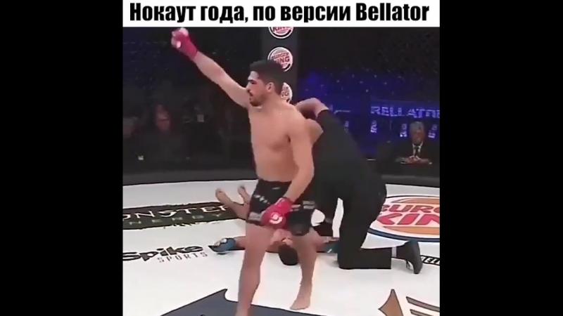 Нокаут года по версии Bellator