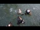 Ледяные жабы на озере Смолино. Пинаем заледеневших лягух.