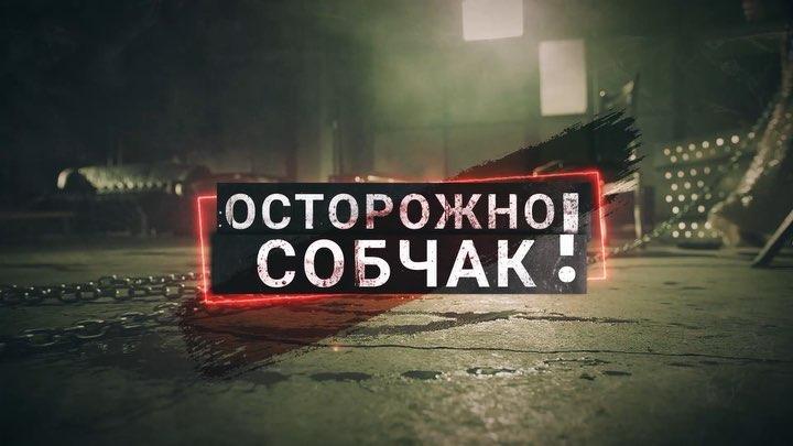Ксения Собчак on Instagram Я одна из немногих кто знает Ольгу Бузову еще как просто новенькую на Доме2 поэтому этот выпуск это больше че