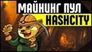 Пул для майнинга HashCity. Как заработать деньги на майнинге криптовалюты