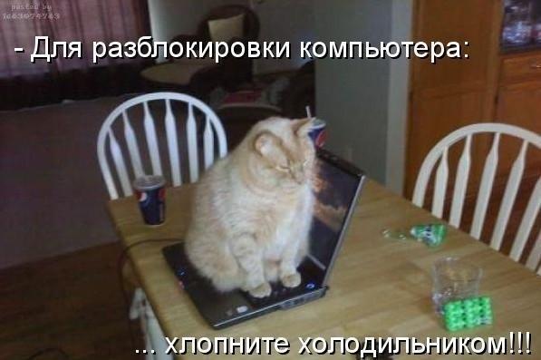 http://cs407217.userapi.com/v407217178/19f4/44ttPeKrxfQ.jpg